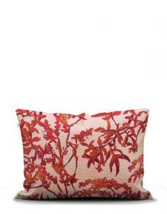 ESSENZA Bowie Rose Pillowcase 60 x 70