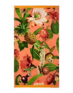 ESSENZA Catherine Koralle Strandhandtuch 100 x 180 cm