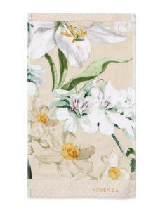 ESSENZA Rosalee Natural Guest towel 30 x 50
