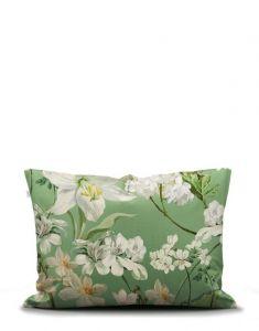 ESSENZA Rosalee Basil Pillowcase 65 x 100  set