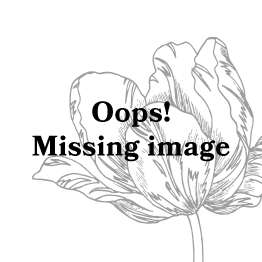 ESSENZA Maple Fleur Grey Trousers Long XS